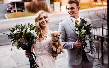 ペット参加結婚式 Aラインドレス 欧米