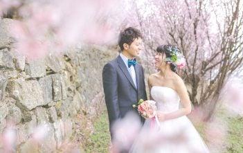 春 前撮り 桜テーマ